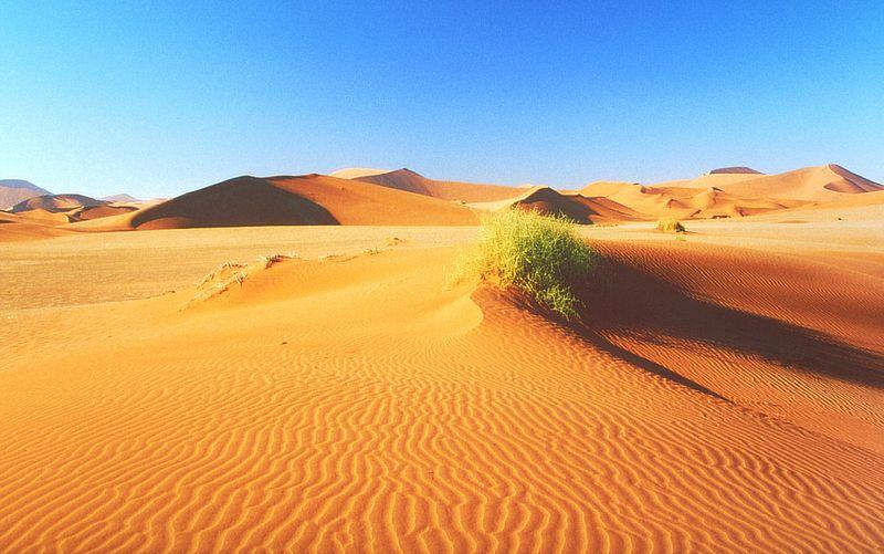 Datei:Namib2.jpg