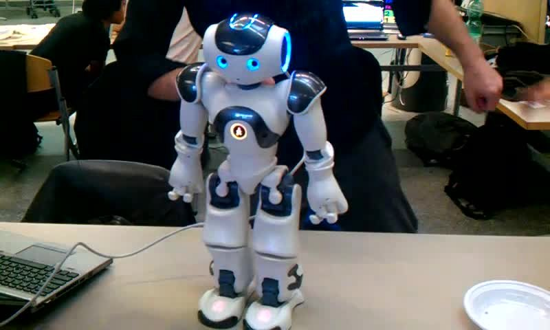 Nao Robot and the Robotics Future