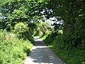 Narrow country lane to the village of Tal-y-bont - geograph.org.uk - 827921.jpg