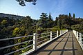 National Botanical Garden of Georgia باغ های بوتانیکال در شهر تفلیس گرجستان 17.jpg