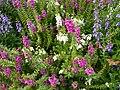 Natural flowers Alexandria, VA.jpg