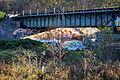 Naturschutzgebiet Am roten Steine - Eisenbahnbrücke am Nordwestlichen Beginn (5).JPG