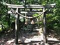 Neko JINJA shrine.JPG