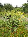 Neuer Botanischer Garten - Systematische Abteilung 003.jpg