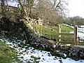 New Stile in an Old Wall - geograph.org.uk - 342014.jpg