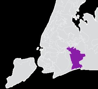 New Yorks 10th State Senate district American legislative district