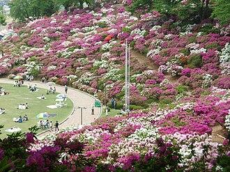 Sabae, Fukui - Image: Nishiyama Park