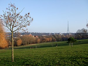 Norwood Park (London) - View of the Crystal Palace transmitting station from Norwood Park