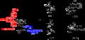 Nucleoside phosphoramidites.png