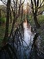 Nymphenburg Biedersteiner Kanal München Bayern.jpg