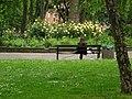 Oakley Square Gardens, Camden Town - geograph.org.uk - 178583.jpg