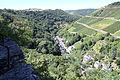 Oberwesel-Schönburg, Blick ins Engehölltal.jpg