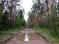 Okhanskiy r-n, Permskiy kray, Russia - panoramio (29).jpg