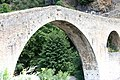 Olargues-1176 - Flickr - Ragnhild & Neil Crawford.jpg
