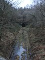 Old Railway Tunnel - November 2010 - panoramio.jpg