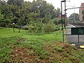 Orchard-Garden.jpg