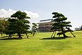 Otsuka-shiosai-so02s5s3300.jpg