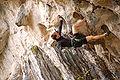 Overhanging rock climbing.jpg