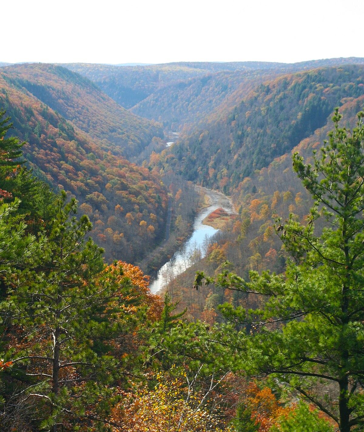 Pine Creek Gorge Wikipedia