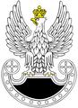 POL Wojska Specjalne.png