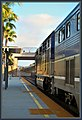 Pacific Surfliner @ Solana beach Ca. (6447337399).jpg