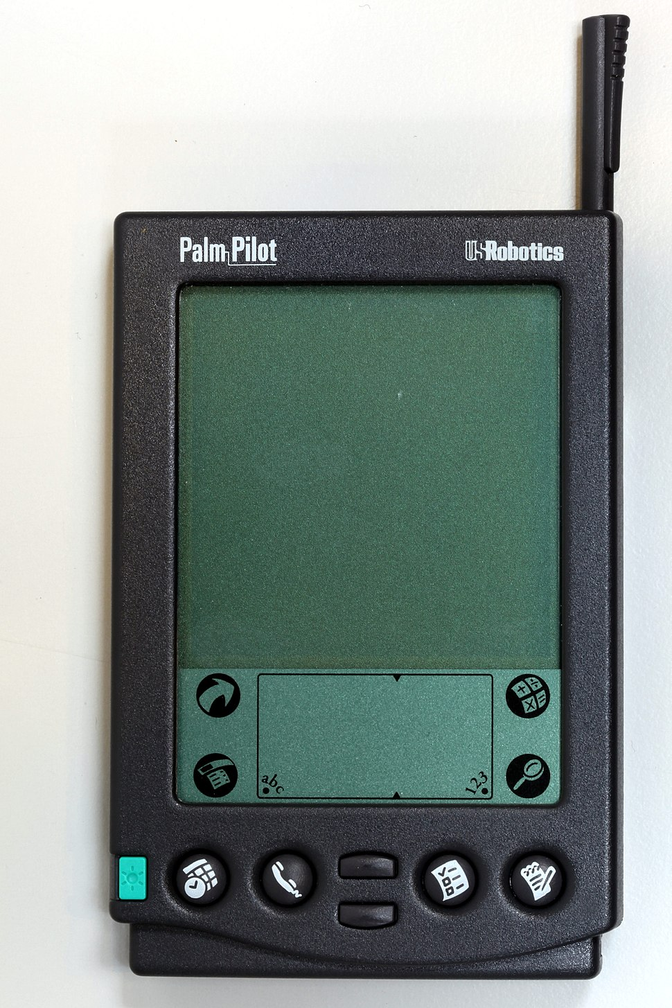 Palm-IMG 7024
