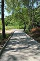 Park-Zdorovia-remont-15070303.jpg