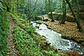 Parque da Cabreia - Silva Escura - Portugal (3167062419).jpg