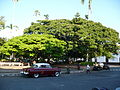 Parque de Bolívar. Cartago, Valle, Colombia.JPG