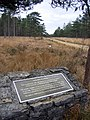 Parsons Pleasure Memorial, Wareham Forest, Dorset - geograph.org.uk - 84646.jpg