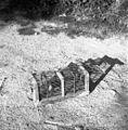 Past za podgane, Vrh 1961.jpg