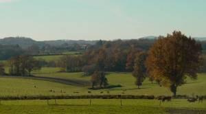 Creuse - Creuse landscape