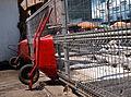 Peces sobre ruedas - Flickr - moralescv.jpg