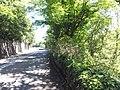 Pentir, UK - panoramio (5).jpg