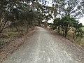 Penwortham SA 5453, Australia - panoramio (4).jpg
