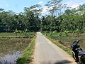 Pernasidi - panoramio.jpg