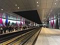 Perron metrostation Europaplein inclusief spoor.jpg