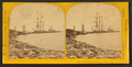 Peshtigo Cor. dock on Green Bay, by Carbutt, John, 1832-1905 2.png