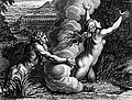 Picart alpheus arethusa.jpg