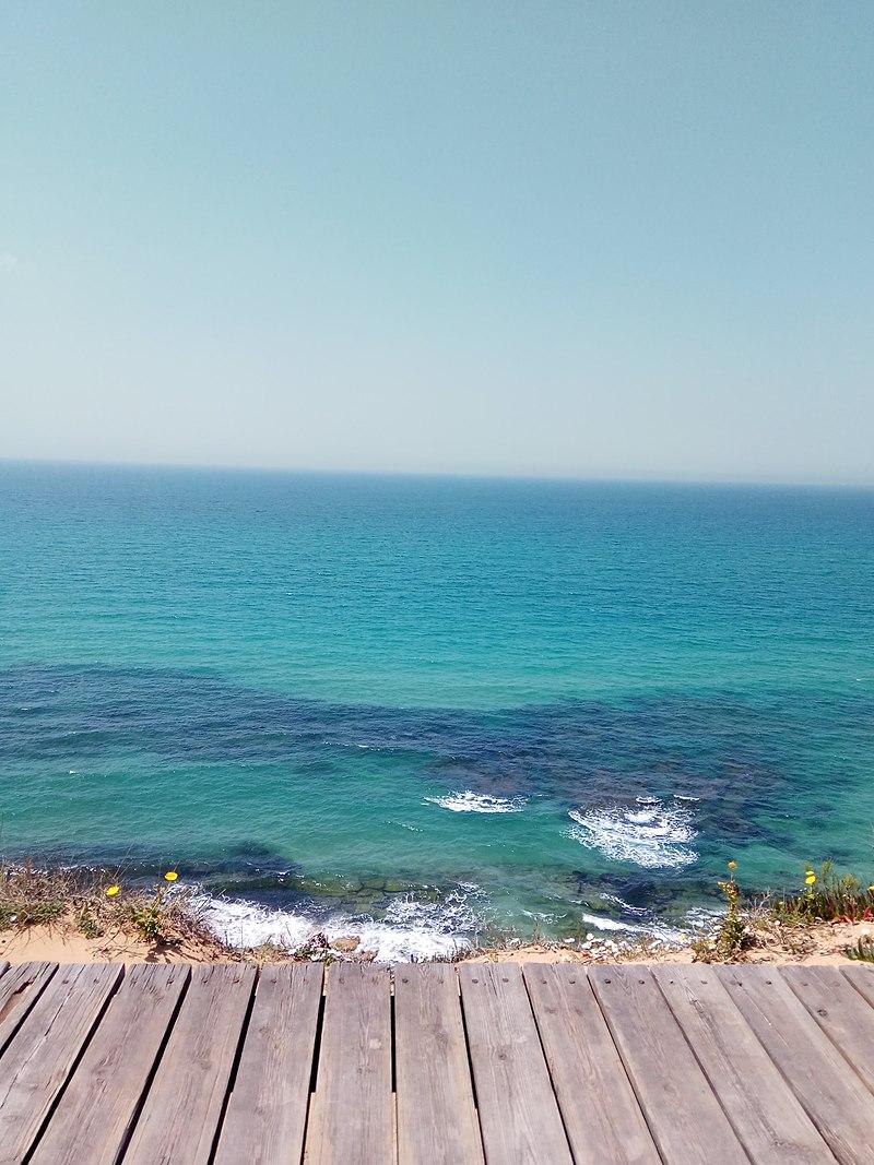 שמורת חוף ה שרון