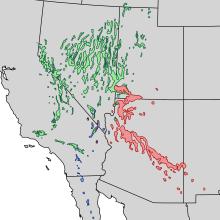 Pinus monophylla range map 3.png
