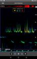 Pipistrellus pygmaeus (41504622111).png