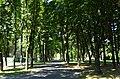 PlantyBieńczyckie-Os.StrusiaIKalinowe-POL, Kraków.jpg