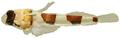 Platygillellus rubrocinctus - pone.0010676.g144.png