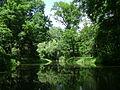 Poland. Warsaw. Śródmieście. Royal Baths Park 029.jpg