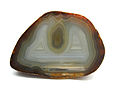 Polished Agate Macro 3.JPG
