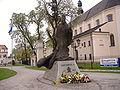Pomnik papieża w Łowiczu.JPG