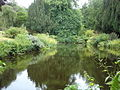Pond at Benvarden - geograph.org.uk - 859748.jpg