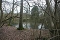 Pond near Chiddingstone - geograph.org.uk - 1717839.jpg