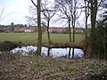 Pond near Hatchetts - geograph.org.uk - 1751607.jpg